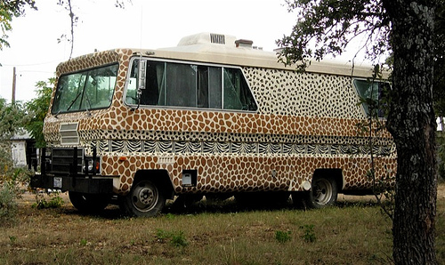 RV Vehicle in leopard print