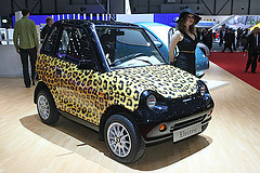 Reva car in Leopard Print