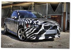 zebra print design VOLVO C30