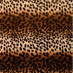 The Gift Wrap Company Leopard Print Deluxe Gift Wrapping Paper